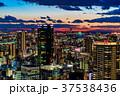 大阪府 大阪 都市風景の写真 37538436
