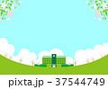 学校 校舎 桜のイラスト 37544749