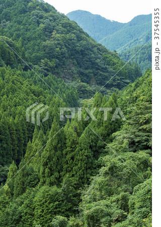 安富ダムからの景観 豊かな自然 (兵庫県姫路市安富町) 37545355