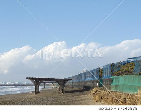 風の強い日の稲毛海岸 37545878
