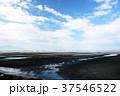 干潟と青空 37546522