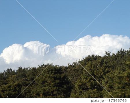 稲毛海浜公園の青空と白い雲 37546746