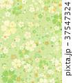 桜 春 模様のイラスト 37547324
