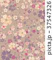 桜 春 模様のイラスト 37547326