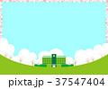 学校 校舎 桜のイラスト 37547404
