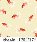 和柄 金魚 37547874