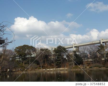 千葉公園の青空と白い雲 37548852