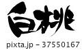 筆文字 桃 白桃のイラスト 37550167