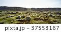 景色 風景 空の写真 37553167