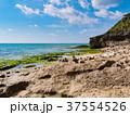 浜辺 海 海岸の写真 37554526