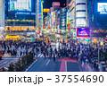 東京 渋谷駅 スクランブル交差点の夜景 37554690