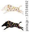 和柄で装飾されたイノシシ イラストセット 37554692