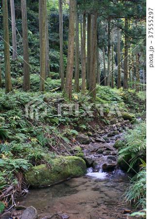 石見銀山遊歩道 37555297