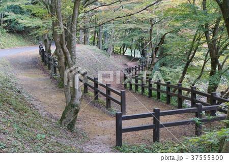 石見銀山遊歩道 37555300