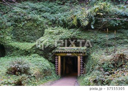 石見銀山龍源寺間歩入口 37555305