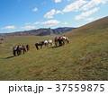 モンゴル 37559875