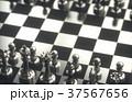 チェス ゲーム 試合のイラスト 37567656