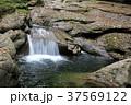 赤目四十八滝 赤目四十八滝渓谷 滝の写真 37569122