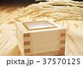 酒 枡 日本酒の写真 37570125