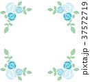 薔薇 水色 飾り枠のイラスト 37572719
