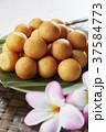 カイムカイノッククラター(タイのうずら型のサツマイモのお菓子) 37584773