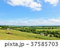 北海道 美瑛 千代田の丘からの風景 37585703
