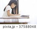 女の子 女子 小学生の写真 37588048
