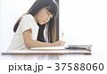小学生 教室 女の子 37588060