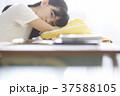 小学生 放課後 教室 女の子 37588105