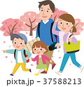 家族 春 桜のイラスト 37588213