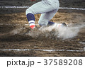 野球 人物 選手の写真 37589208