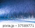 青い池 ライトアップ 夜景の写真 37589771
