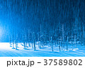 青い池 ライトアップ 夜景の写真 37589802