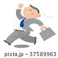 ビジネスマン 肥満 太りぎみのイラスト 37589963