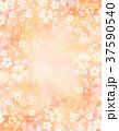 桜 春 模様のイラスト 37590540