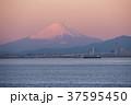 海ほたるの富士山 37595450