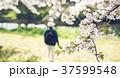 男性 公園 リュックの写真 37599548