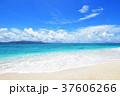 海 ビーチ 砂浜の写真 37606266