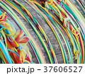 colorful ribbon for pray 37606527