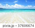 海 ビーチ 砂浜の写真 37606674