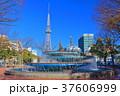 名古屋テレビ塔と噴水広場 37606999
