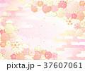花 梅 背景のイラスト 37607061