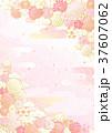 花 梅 背景のイラスト 37607062
