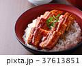 うな丼のアップ 37613851