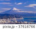 街 風景 富士山の写真 37616766