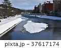 雪景色 浅野川 金沢の写真 37617174
