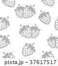 いちご イチゴ 苺のイラスト 37617517