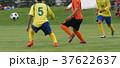 サッカー フットボール 37622637