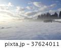 雪景色 積雪 銀世界の写真 37624011