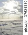雪景色 積雪 銀世界の写真 37624330
